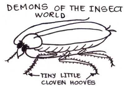 "Drawing of a cockroach labelled ""Demons of the insect world""."