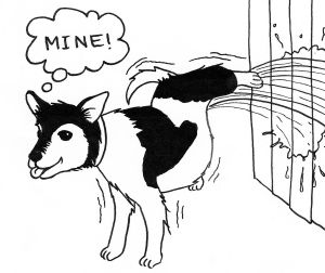 Cartoon of a dog urinating vigorously against a fence and thinking, 'Mine.'