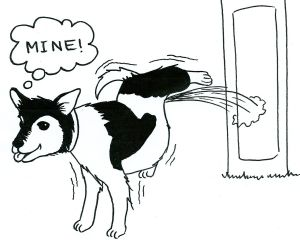 Cartoon of a dog urinating against a lamp post and thinking, 'Mine.'